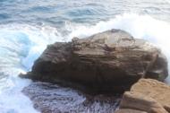 More Waves Crashing