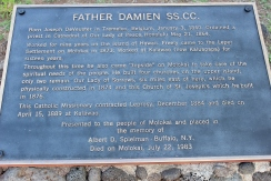 Father Damien Plaque