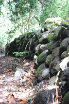 Rock wall along the driveway.