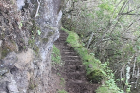 The trail was pretty narrow in some places.