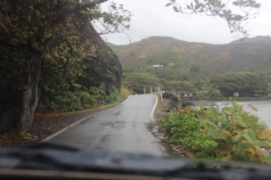 View of the road from the car.