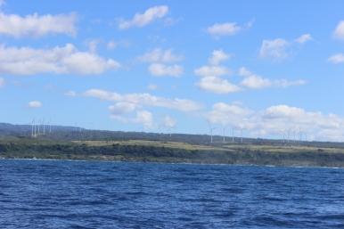 Wind farm on the North Shore.