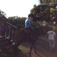 Josh just getting on the mule.