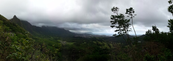 A slightly different view than the Pali lookout.