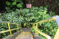 Stairs to Kaumana Caves