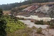 Sulphur Banks 3