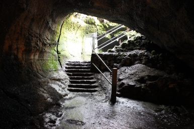 The entrance to Thurston Lava Tube from the inside of the tube.