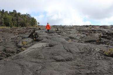 Josh walked through the lava field.
