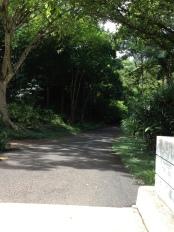 The path that runs through the valley.