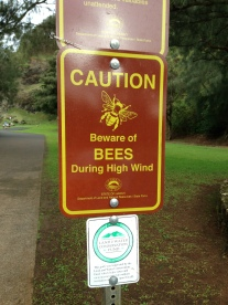 A sign warning us of bees during high winds. It was incredibly windy...no bees though.