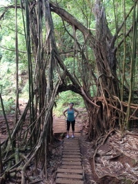Emel in the tree arch on the way to the waterfall.