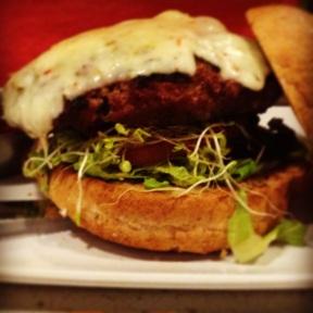 Josh's bison burger