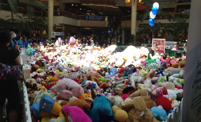 All of the stuffed animals that were donated!