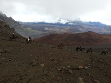 Haleakalā Horseback Ride 7