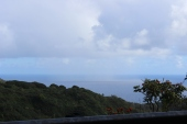 Beautiful view early in the morning on the start of our trip to Hana.