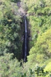 Incredible! Lower Puohokamoa Falls.