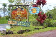 More of Coconut Glen's signs.