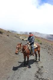 Haleakalā Horseback Ride 11