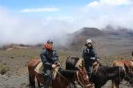 Haleakalā Horseback Ride 14