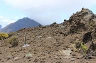 Haleakalā Horseback Ride 19