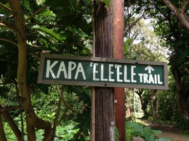 Kapa`ele`ele Trail 1
