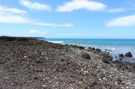 La Perouse Bay 5