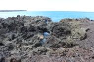 La Perouse Bay 9