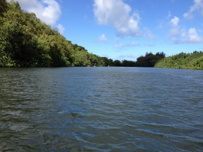 Wailua River 10