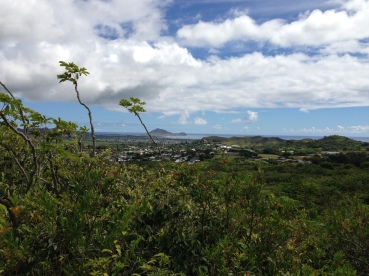 Olomana Trail 5