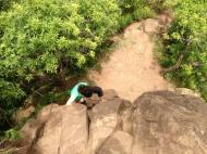Climbing down!