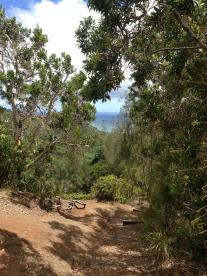 Hau`ula Loop Trail 19