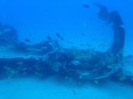 Atlantis Submarine 16