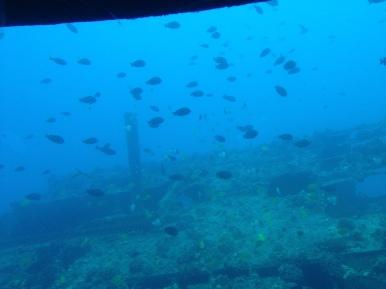 Atlantis Submarine 20