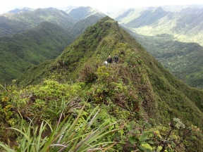 Tripler Ridge to Haiku Stairs 54