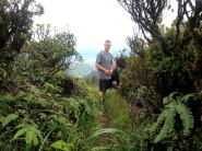 Tripler Ridge to Haiku Stairs 29