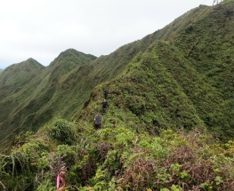 Tripler Ridge to Haiku Stairs 36