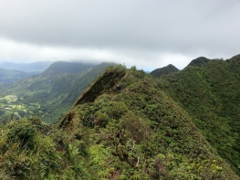 Tripler Ridge to Haiku Stairs 35