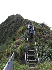 Tripler Ridge to Haiku Stairs 74