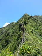 Tripler Ridge to Haiku Stairs 82