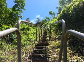 Tripler Ridge to Haiku Stairs 85