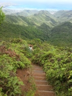 Hiking up the numerous stairs..