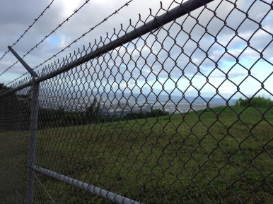 The beginning of the hike looking through the fence at Tripler.