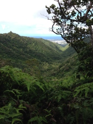 Tripler Ridge to Haiku Stairs 20