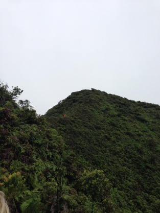 Tripler Ridge to Haiku Stairs 34