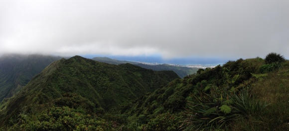 Tripler Ridge to Haiku Stairs 43
