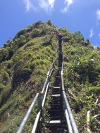 Tripler Ridge to Haiku Stairs 81