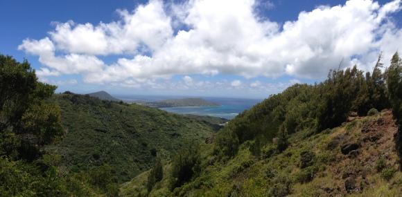 Hawaii Loa Ridge Trail 4