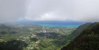 Hawaii Loa Ridge Trail 12