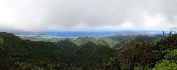 Hawaii Loa Ridge Trail 14