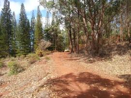 Munro Trail 22